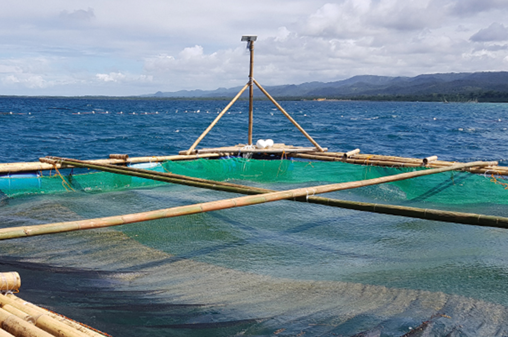 Vita Isola Fish Cage